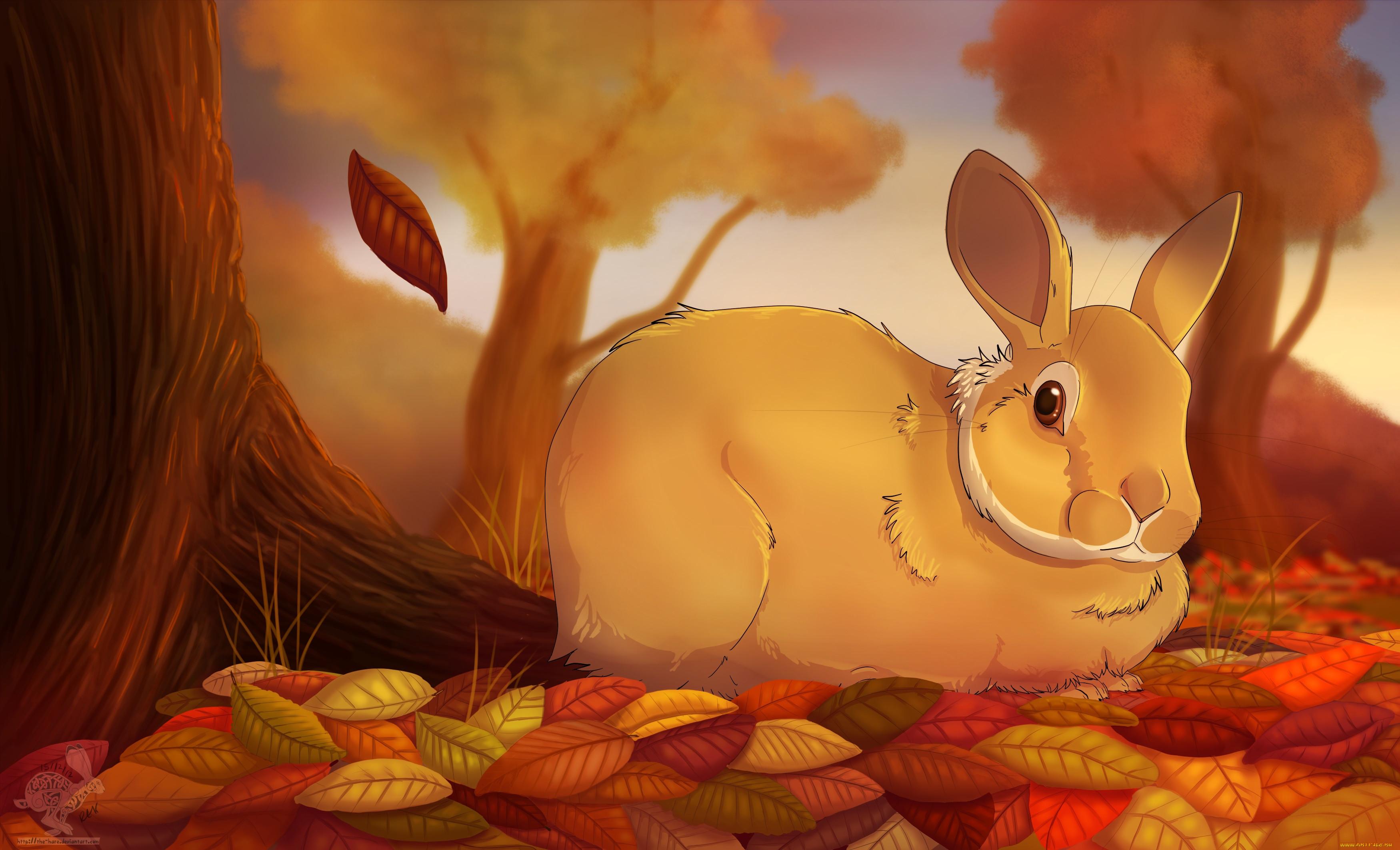 Картинки зайцы осенью для детей